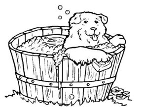 puppy_in_a_tub.jpg